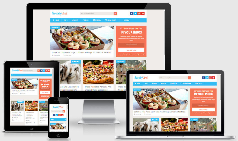 WordPress Theme for viral blog
