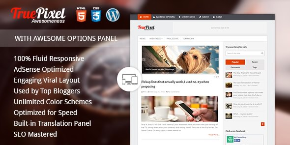 Social Sharing WordPress Theme